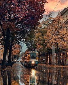 Zurich Switzerland Zurich Switzerland Travel Europe Autumn
