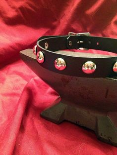 Leather Collar with Metal Domes $17.50