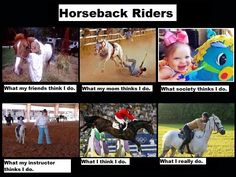 """yep xD Except my mom (A past very good barrel racer) doesn't find it dangerous at all. She's one of those, """"You don't have to wear a helmet unless you are on a terrible horse, if you fall, you have to get back up and face it. Funny Horse Memes, Funny Horses, Horse Humor, Equestrian Memes, Equestrian Problems, Horse Riding Tips, Horse Tips, Akhal Teke Horses, Riding Quotes"""