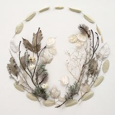 Charming art objects - 68 combinations of flowers and leaves as beautiful paintings - Decoration Solutions Leaf Skeleton, Pressed Flower Art, Nature Collection, Flower Mandala, Leaf Art, Nature Crafts, Flower Cards, Beautiful Paintings, Dried Flowers