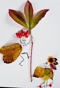 Leaves, boundless imagination :)