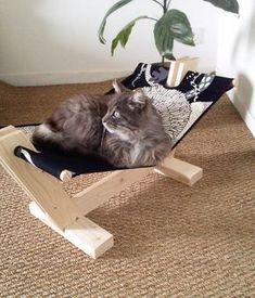 Hamac en bois pour chat