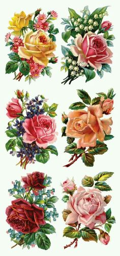 Self Adhesive Victorian Roses 1 Sheet Colorful By