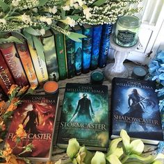 Is there a series that you started and loved but havent finished even though you. - Ashley Reynolds - Papéis De Parede, Sapatos, Fotografia, As Fotos Books To Buy, I Love Books, New Books, Good Books, Books To Read, Fantasy Magic, Fantasy Books, Fantasy Book Series, Bunny Book