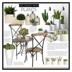 """""""Plants"""" by marionmeyer on Polyvore featuring interior, interiors, interior design, Zuhause, home decor, interior decorating, Allstate Floral, Napa Home & Garden, Pier 1 Imports und Northern Lighting"""
