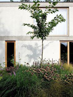 City Gardening Stefan Morael Landscape and Garden Architect - prairie garden Detail Architecture, Landscape Architecture, Landscape Design, Vegetable Garden Planning, Vegetable Garden Design, Cheap Plants, Prairie Garden, Gardening Courses, Gardening Services
