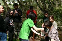 Sortida de descoberta del riu Tenes a Bigues. 13 d'abril de 2013