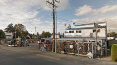 cool Gargoyles grabbed in Aldergrove antique store break-in - British Columbia - Canada News