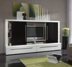 Something like this for the tv, but with frosted glass or white doors...
