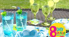 8 Day Dealio ends May 28th. Save on select outdoor dinnerware.