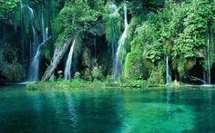 Phu quoc national park http://viaggi.asiatica.com/