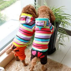 Warm Winter Pet Dog Jumpsuit Fleece Rainbow Stripe Hoodie Coat Clothes M,Brown - http://www.thepuppy.org/warm-winter-pet-dog-jumpsuit-fleece-rainbow-stripe-hoodie-coat-clothes-mbrown/