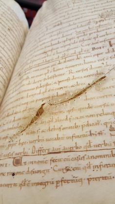 lovely parchment damage (@ubleiden BPL 25, 10th c).