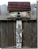 metal roof birdhouse attached to an old chippy post in our garden