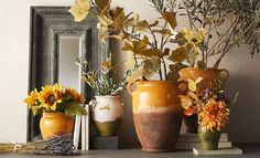 Relaxed Rustic | Pottery Barn