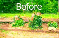 Problem areas in your landscape? Check out these great ideas!