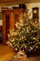 Statek - interiéry :: NOVÁKŮV STATEK 1788 Christmas Tree, Album, Holiday Decor, Home Decor, Teal Christmas Tree, Decoration Home, Room Decor, Xmas Trees, Christmas Trees