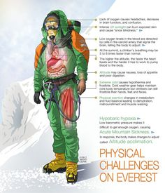 Infographic of Physical Challenges Climbing Everest from the Mayo Clinic