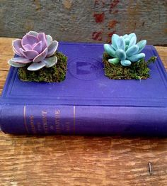 Upcycled Hardcover Book Planter, No. 9 by The Library Lab on Scoutmob Shoppe