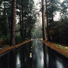 Belle route, chlorophylle… et pluie