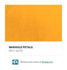f03d6999797 Explore paint color Marigold Petals by PPG Timeless Paint