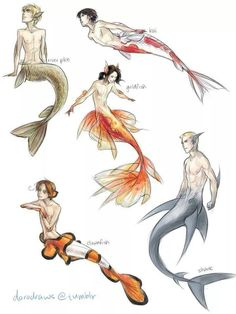 Different fish people/ mermaid/men.                                                                                                                                                                                 More