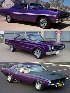 purpley vrooms