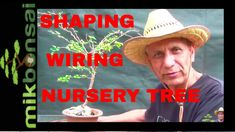How To Shape A Cherry Bonsai Tree (From Nursery Plant) – Japanese Fuji … – Home Decoration Cherry Bonsai, Plant Nursery, Fuji, Japanese, Shapes, Plants, Decoration, Videos, Modern