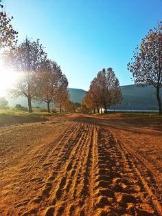 Country Road in Remhoogte, North west Province, South Africa. Pic by Robin Brown