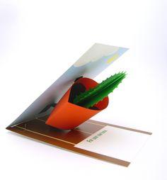3D Pop-up Cactus by Nicolaas Burgers, via Behance