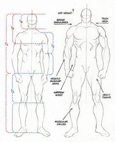 character-male-anatomy27