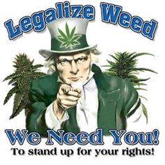 Legalization of cannabis    calmed420.com