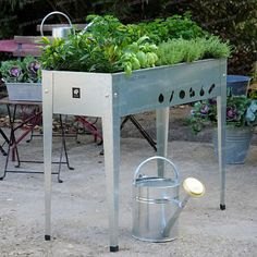 potager sur pieds jardinage pinterest. Black Bedroom Furniture Sets. Home Design Ideas