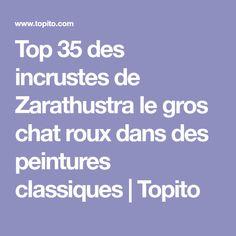 Top 35 des incrustes de Zarathustra le gros chat roux dans des peintures classiques | Topito