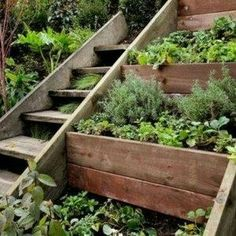 Sloped Landscape Design Ideas Designrulz Landscaping Steep