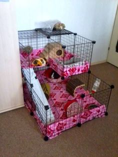 My cage with other fleece - Guinea Pig Cage Photos