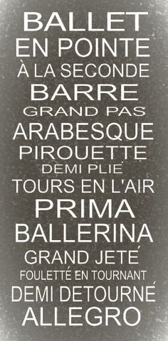 Ballet en pointe...so amazed that I know how to pronounce all of this I think I know more French than English:)dancer(: