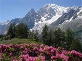 Monte Bianco: Viaggio nelle Alpi, meraviglia della Terra