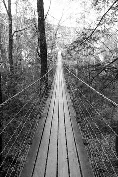 The Great Outdoors - Suspension Bridge, Fall Creek Falls State Park, Pikeville, TN