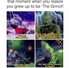 """That moment you realize you grew up to be """"The Grinch"""""""