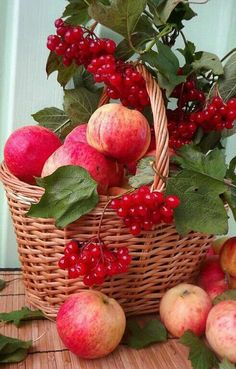 Discover beautiful side of life; Fresh Fruits And Vegetables, Fruit And Veg, Beautiful Fruits, Beautiful Flowers, Beautiful Moments, Fruits Photos, Fruit Picture, Fruit Photography, Fruit Garden