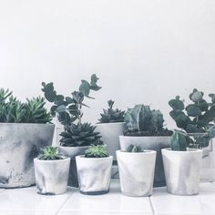 I've just found White/Black Or White/Grey Marbled Cement Mini Pot. Handmade and unique pots in white porcelain cement with marble pattern in either grey or black cement.. £10.00