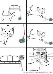 trollface meme trolling the cat