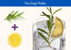 Top off your cocktail with fresh fruit and herbs to add an extra pop of color and flavor. This Lemon Burst calls for 2 oz. Van Gogh Vodka and 3 oz. club soda combined in a tall glass with ice. Garnish with a lemon wheel and rosemary sprig.
