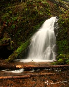Fern Rock Falls in the Tillamook State Forest.