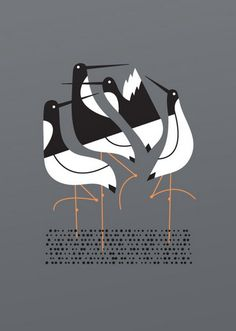 Terns art print  hand made screen print on heavy paper  print measures 10 inches x 14 inches  signed & numbered edition of 140  artist:  bee things  $25