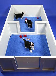 Weaning Pens « Jonart Whelping Box Dog Whelping Box, Whelping Puppies, Dog Kennels, Loyal Dog Breeds, Puppy Breeds, Puppy Pens, Pet Puppy, Big Dogs, Dogs And Puppies