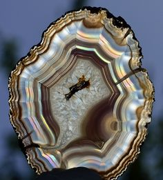 Minerals And Gemstones, Rocks And Minerals, Mineralogy, Agate Geode, Beautiful Rocks, Mineral Stone, Rocks And Gems, Resin Art, Stones And Crystals