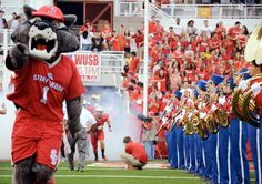 actually miss the place Stony Brook University, College Campus, Athletics, Sports, Hs Sports, Sport
