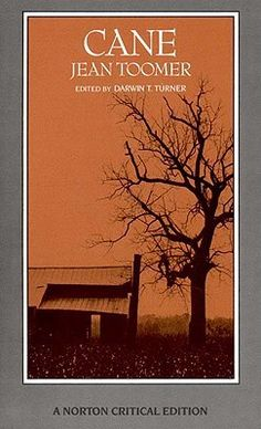 an analysis of cane by jean toomer Cane is a 1923 novel by noted harlem renaissance author jean toomer the novel is structured as a series of vignettes revolving around the origins and experiences of african americans in the united states.